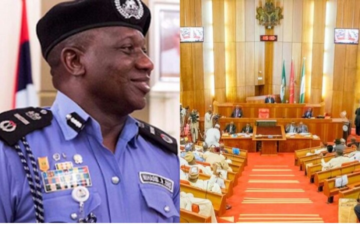 Any Public Officer Who Plans To Place Himself Above An Arm Of Government Is Obviously Not Fit To Remain In Office, You Are Only Afraid Of Your Shadows, National Assembly Tells Police IG, Ibrahim Idris