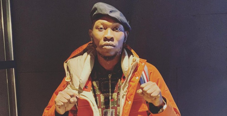 'Nigerian system turned virologists, microbiologists and doctors into tailors, bakers and chefs' – Seun Kuti